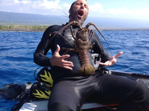 Caught Lobster Saturn Boat