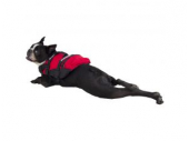 NRS CFD - Dog Life Jacket. Life Jackets